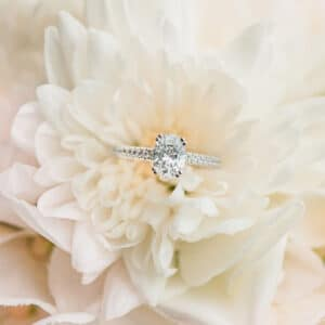 Oval Diamond engagement ring with double claws in white gold.