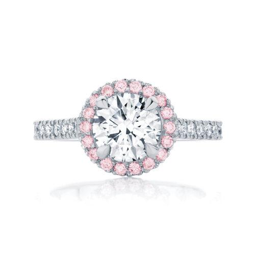 Round Halo Engagement Ring Platinum | Rosetta (Brilliant) IV