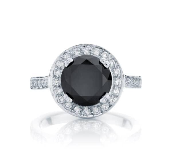 Round Halo Engagement Ring White Gold | Serenity Night